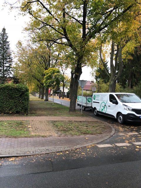 Gartenservice in Berlin Hecke schneiden lassen vom Profi