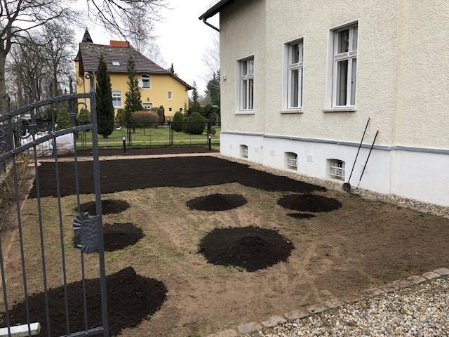 Gartenpflege und neu ansäen in Berlin