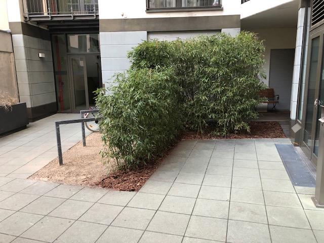 Gartengestaltung in Berlin Pflege der Wohnanlage