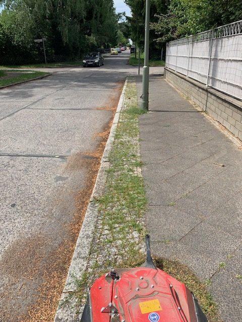 Unkrautentfernung Gehweg Vorher Gehwegpflege Berlin